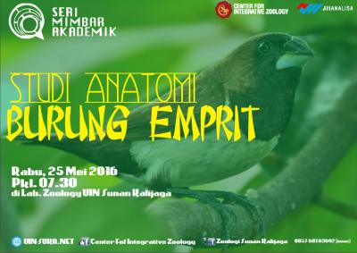 Studi Anatomi Burung Emprit– Seri Mimbar Akademik #62